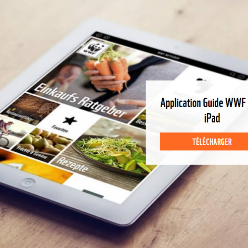 Alimentation saine : une application