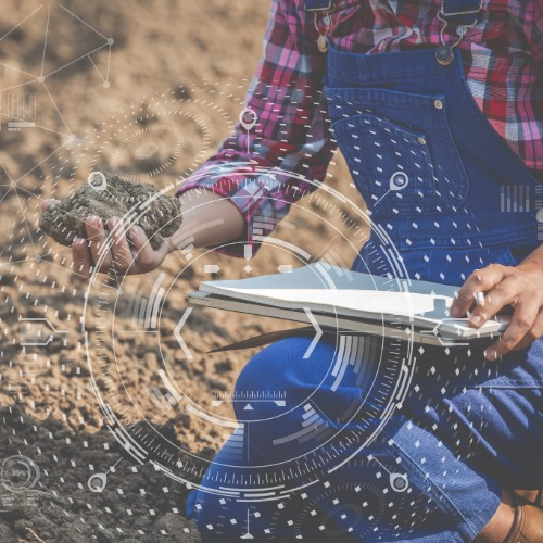 Ces agriculteurs tournés vers le futur
